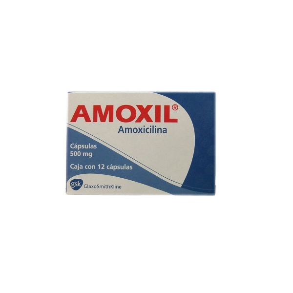 How many times a day should an adult male take amoxicillin 500mg for an ear infection?